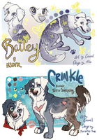 contest puppies by Colonels-Corner