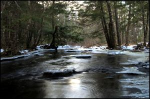 icy creek by bambi1964
