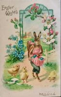 Borrowed Mrs. Cottontail's Apron - Quit Laughing! by Yesterdays-Paper
