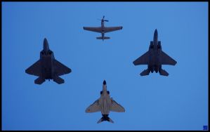 Heritage Flight by MauserGirl