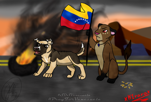 SOS Venezuela!-Collab by Karu12
