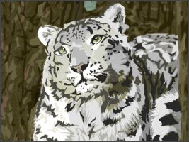 Snow Leopard Rests - Vector by EmmaEsme