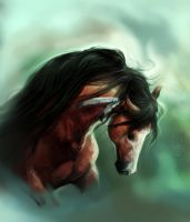Speed painting Indian Horse by Elsouille