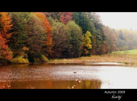 Lake in autumn by niwaj