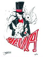 25 Days of DC - Zatanna by JeremyTreece