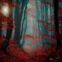written with blood by ildiko-neer