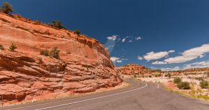 Serpentine Road by Wyco