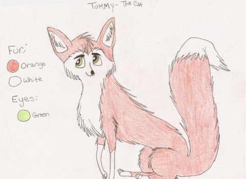 Tommy the cat by Darkwolf15