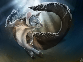 Quoll/LungFish Mashup for RoseQuoll by Quoosa