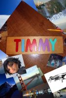 Through the Eyes of TIMMY by timbox129