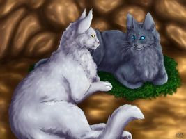 Whitestorm and Bluestar by Vialir