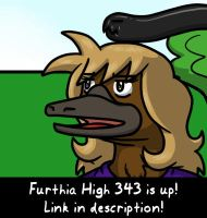 Furthia High 343 by QuetzaDrake