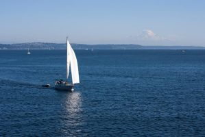 Elliott Bay by FellowPhotographer