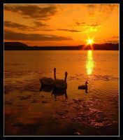 ON GOLDEN POND by gordonrae