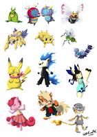 PKMNC - Bug Donations and Donors