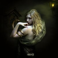 The  Fog by vampirekingdom
