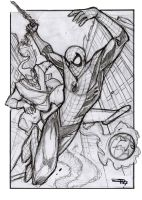 Spiderman and the Green Goblin by DenisM79