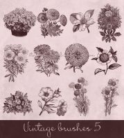 vintage brushes 5 by Etoile-du-nord