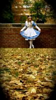 Down the Rabbit hole. by Dee-ph