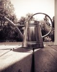 Majestic water pitcher by Perbear42