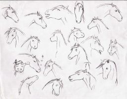 Horse character study 1 by DelightsJD