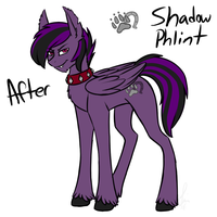 Shadow new Look by Sinsays on tumblr by shadowphil666