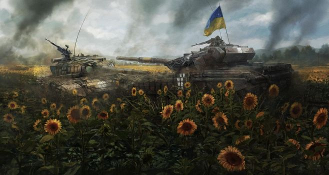 Sunflower fields by RadoJavor