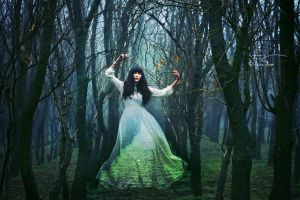 The Forest Whisperer by iNeedChemicalX