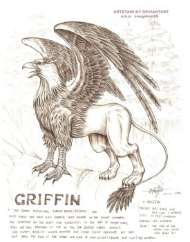 griffin by artstain