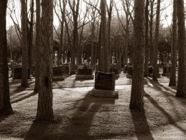 Creapy cemetary by Swatmax