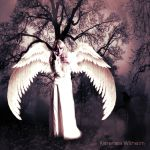 THE WHITE ANGEL by KerensaW