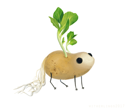 Potato by witherlings
