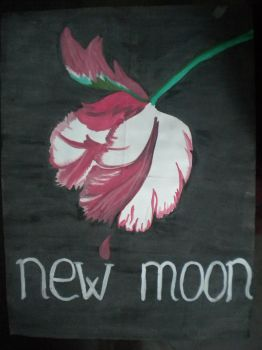 New moon by LindenFlower