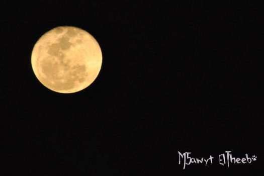 New Moon.. by M5awyt-Eltheeb