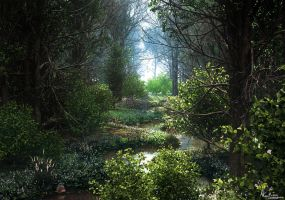 Deep in the woods by AronKamo