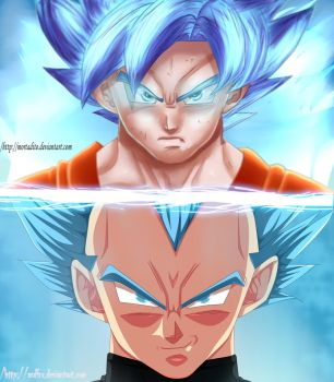 Goku and Vegeta ssgss Collab by mortadito