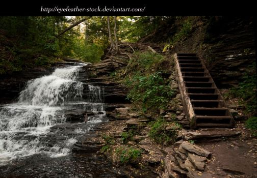 steps and falls by eyefeather-stock