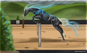Storms first competition by Catiza