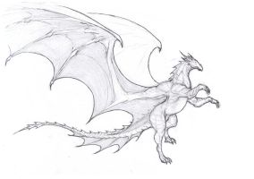Sky steed dragon by krigg