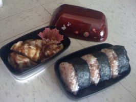 My latest Bento :D by LunarBerry