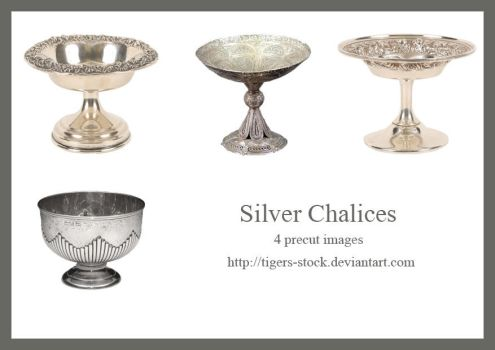 214 Silver Chalices by Tigers-stock