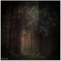 _ by Weissglut