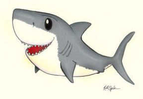 cute great white shark - photo #1