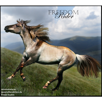 HEE Horse Avatar- Freedom Rider by Prince-Studios