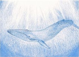 Day 1: Blue Whale ACEO by whitetippedwaves