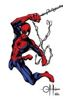Spider-Man (Colored, after Bagley) by rhixart