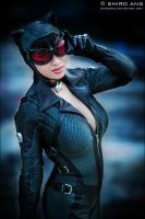 Catwoman - 03 by shiroang