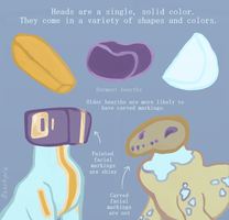 Head and Marking Guide by Beachpie
