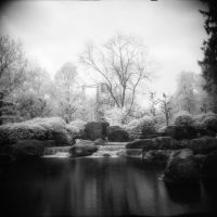 Japanese garden by JDV-from-A