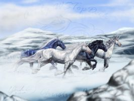 Mountain Gallop by WSTopDeck
